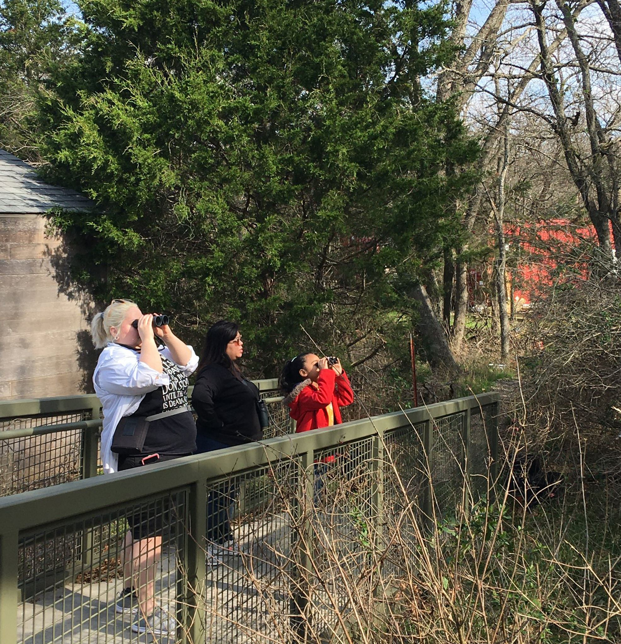 dogwood-audubon-people-bird-watching